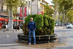 Mossy Fountain in Aix